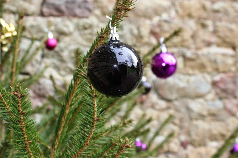 Les vacances de Noël en Bretagne