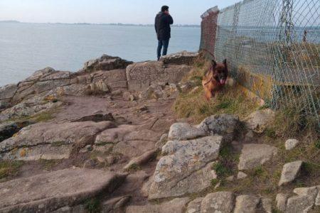 un homme et son chien à Carnac