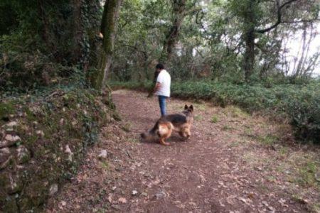 dans les bois avec son chien