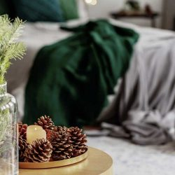spruce-candle-and-cone-on-small-wooden-table-in-W5VXZSL